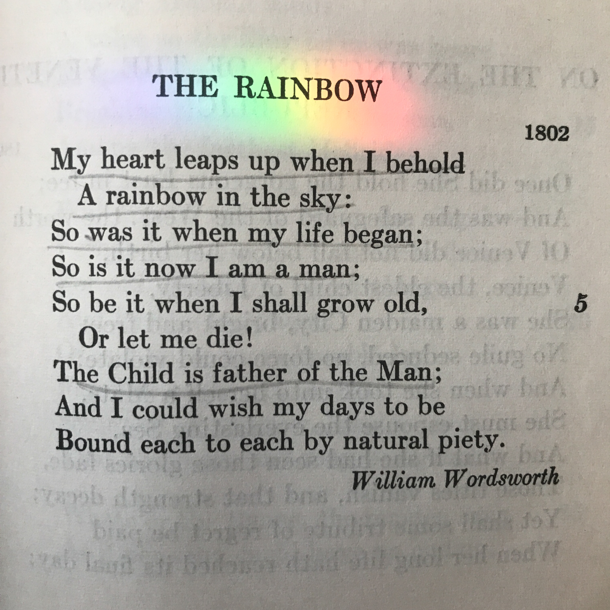 My Heart Leaps Up By William Wordsworth Rebekah Bethany